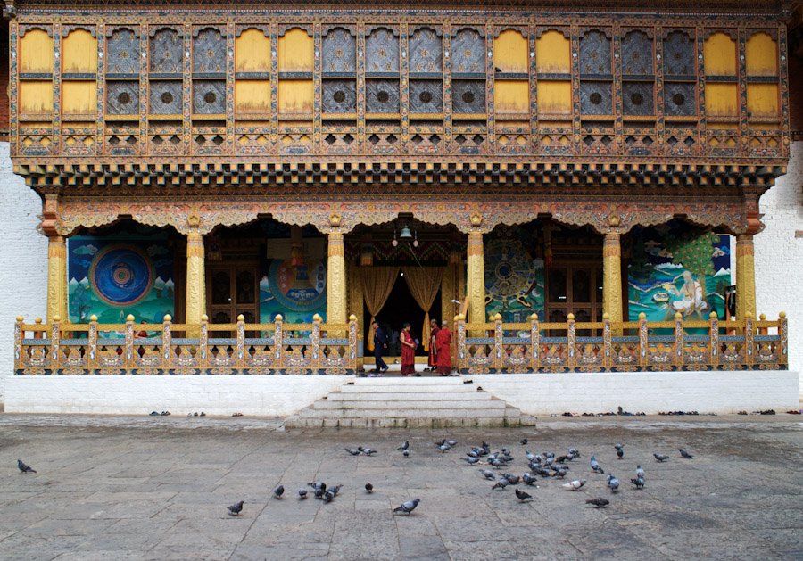 The pigeons have it nice inside the Dzongs